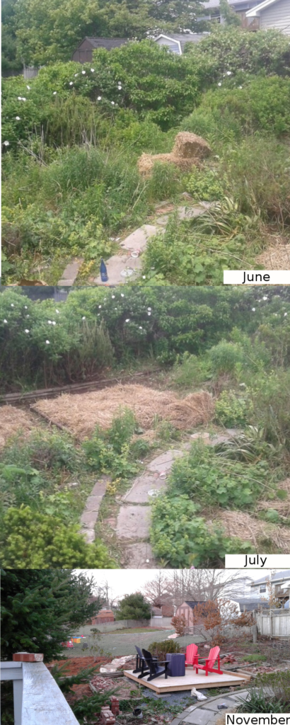 Before and after shot of cleared land